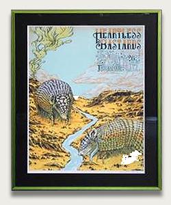 armadillo-poster