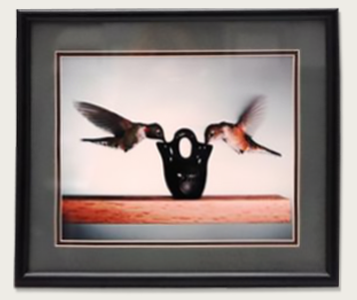 hummingbirds-framed-photo
